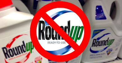 Monsanto's Roundup Found to Cause Cancer Again