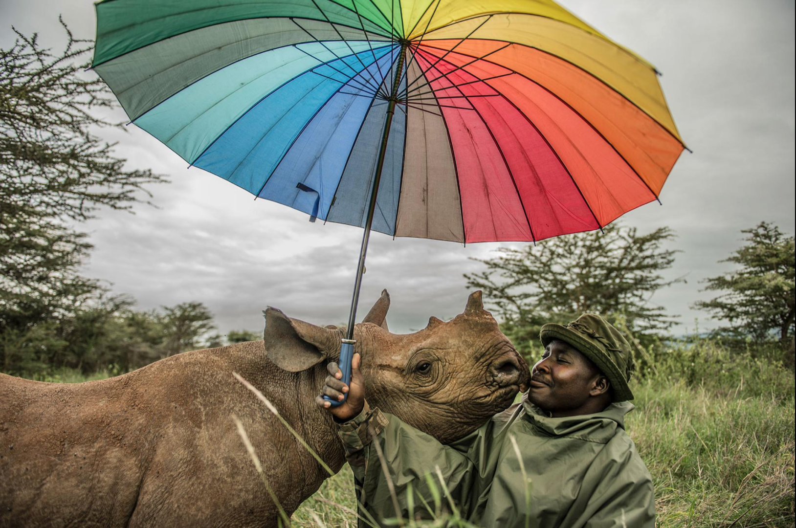 One stunning thing: NatGeo's Photos of Life on Earth