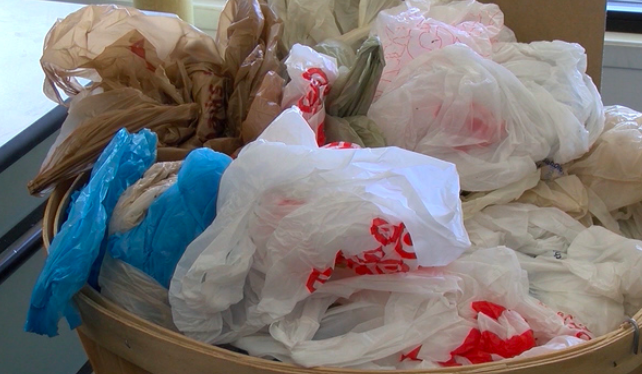 Plastic Bags in NY Getting Laid Off Like Straws