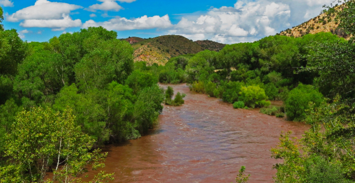 The Gila River Named Most Endangered