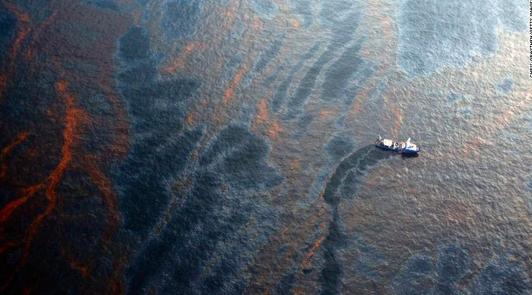 Gulf Oil Spill More Toxic Than First Thought, But Red Snapper in Gulf Rebounding