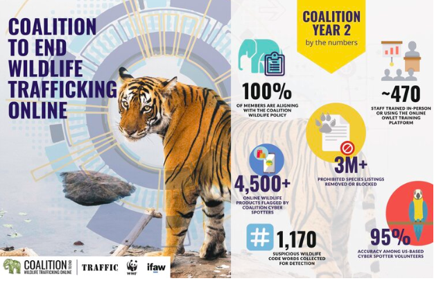 Tech Companies Working to Take Wildlife Trafficking Off the Internet Entirely