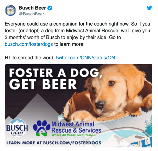 One Furry Thing: Adopt a Pet and Get Some Free Beer