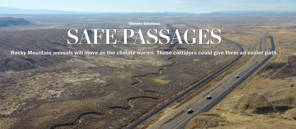 "Creating ""Safe Passages"" To Conserve Migration Routes in Wyoming As the Climate Changes"