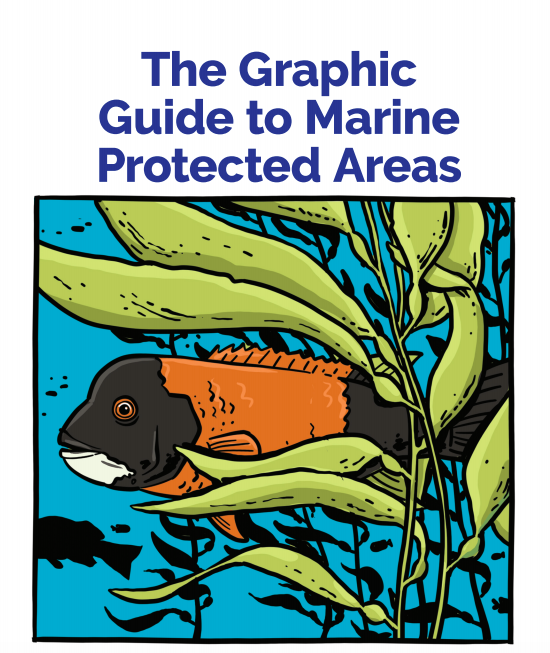 One Cool Thing: A Graphic Guide to Creating Marine Protected Areas