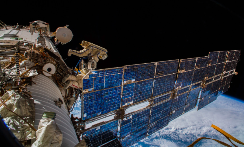 Monitoring Animals From the Space Station To Improve Their Conservation