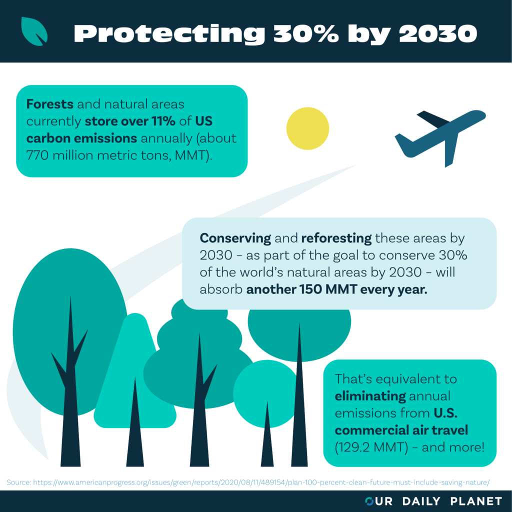 New Report Finds Protecting 30% of US By 2030 Provides Major Carbon Offsets