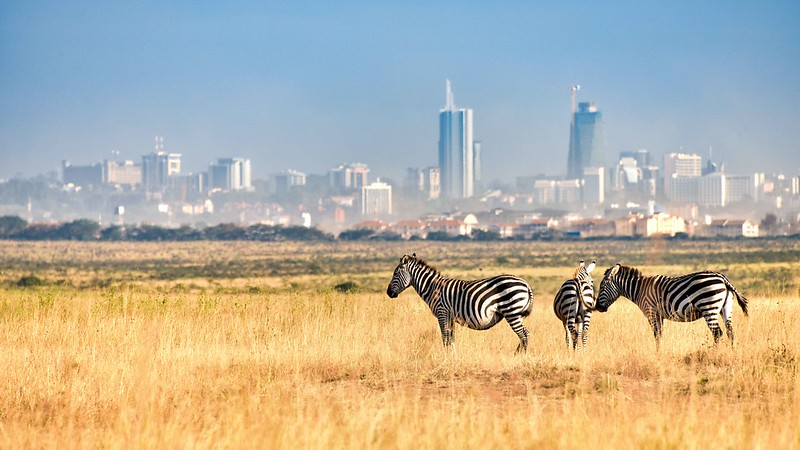 Proposed Fencing in Nairobi National Park Draws Anger from Maasai