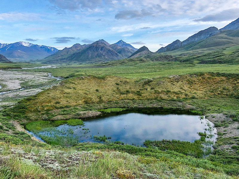 Trump Administration Green Lights Oil and Gas Development in ANWR
