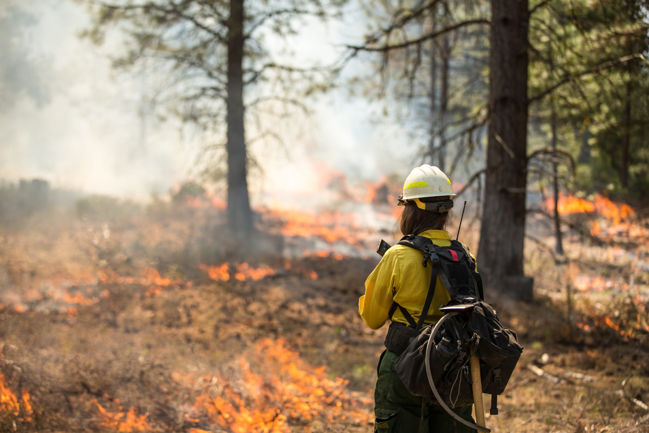 Heroes of the Week: Firefighters Fighting Wildfires