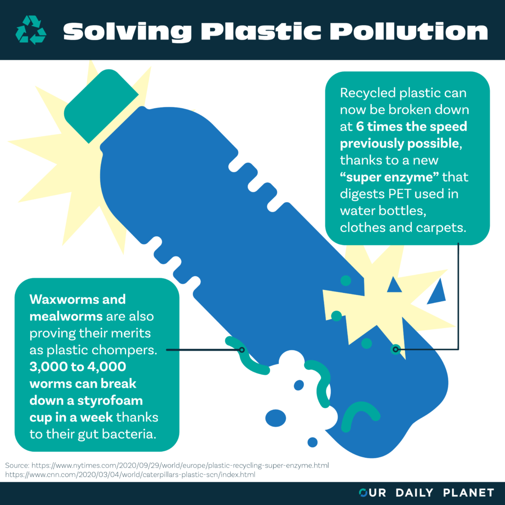 Top Ten Stories of 2020: Plastic Pollution Solutions Begin to Emerge