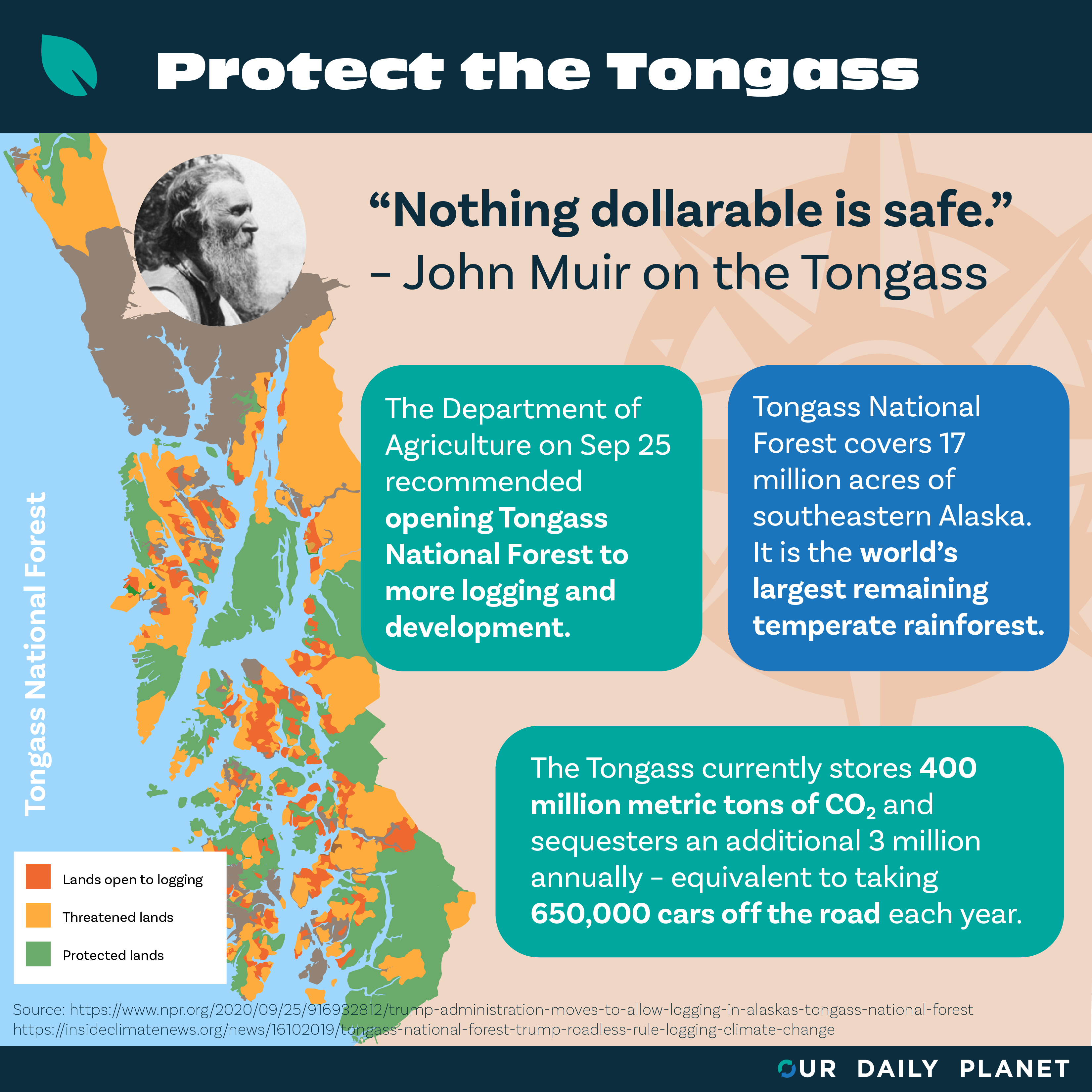 Trump Administration Proposes Another Timber Sale in Alaska's Tongass