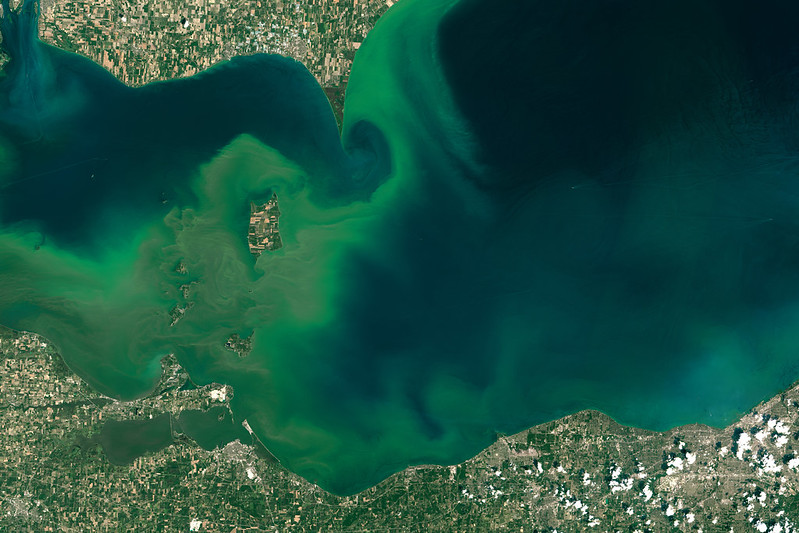 The Great Lakes at Risk