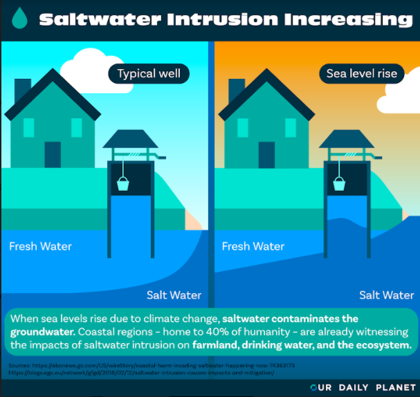 Saltwater Intrusion Threatens the US and the World's Coasts