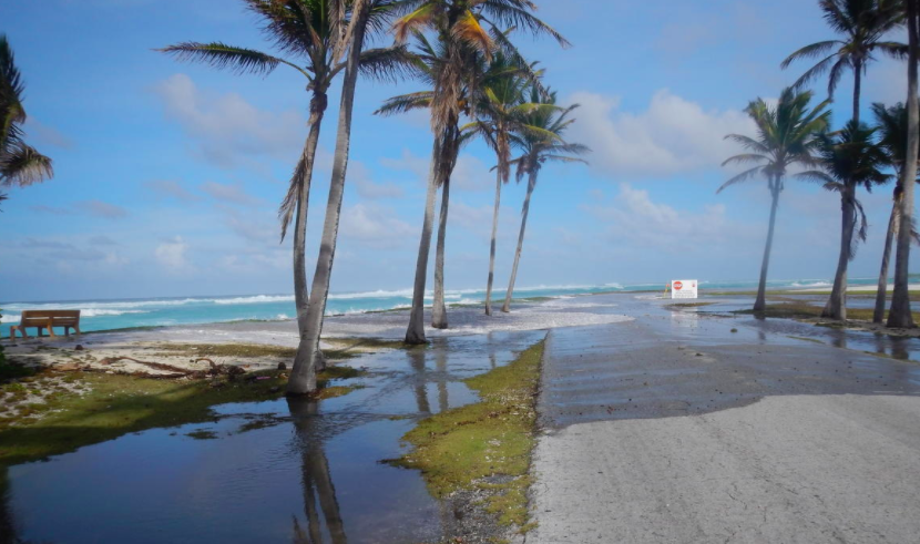 Despite Sea Level Rise, Some Small Islands Are Expanding