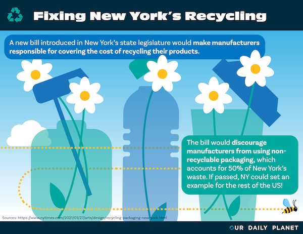 NY Bill Would Shift Recycling Burden to Packaging Producers