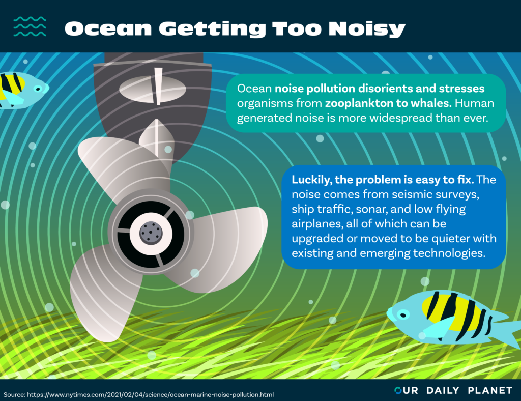 New Study Finds It's Noisy in the Deep