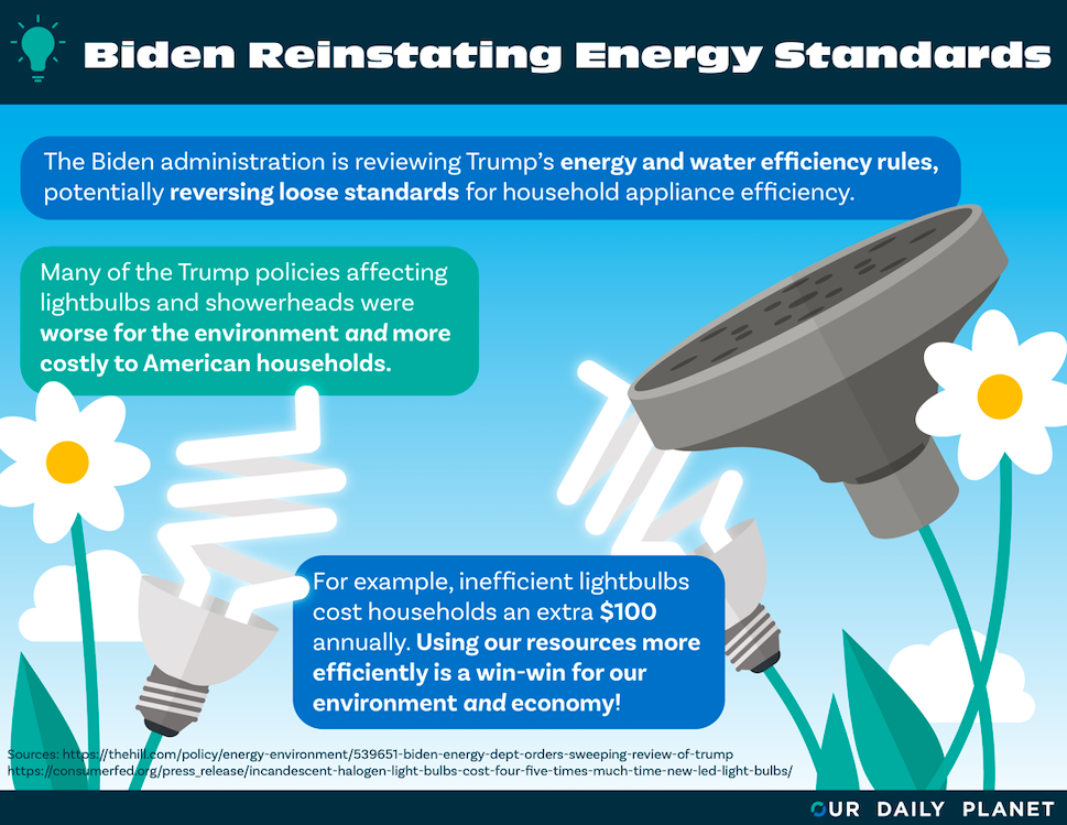Biden Administration Flips Switch on Trump's Inefficient Energy Policies