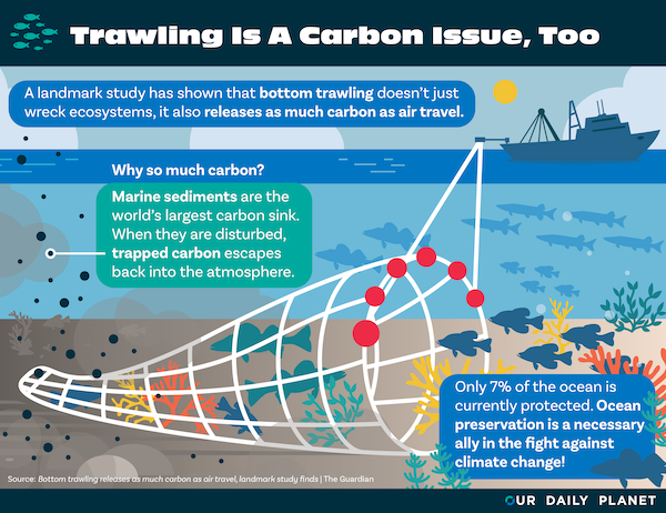 Bottom Trawling Fishing Gear Releases Huge Amounts of Carbon From Sea Floor