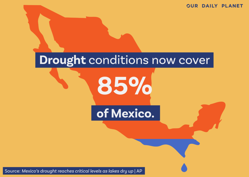 Over 80% of Mexico Affected by Drought Conditions