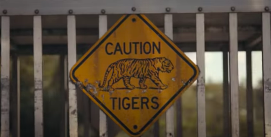 "Animal Activists Cautiously Celebrate as Federal Government Cracks Down on ""Tiger Kings"""