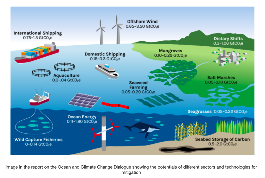 UN Report Says Countries Must Implement Ocean-Based Solutions to Fight Climate Change