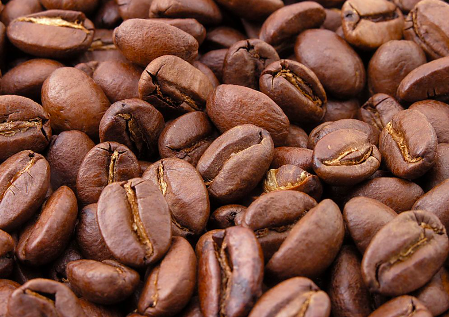 Scientists Rediscover Climate Resilient Coffee Species